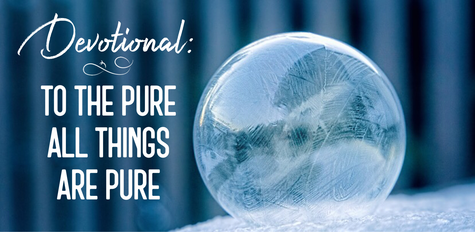 Devotional - To the Pure All Things are Pure